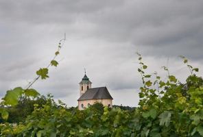 liten kyrka mellan vingårdar