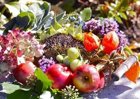 närbild av höstlig dekoration foto