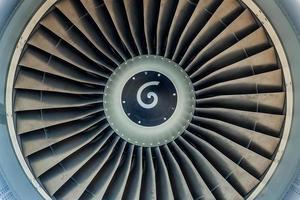 turbin och blad foto