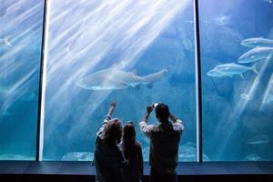 lycklig familj tittar på fiskbehållaren foto