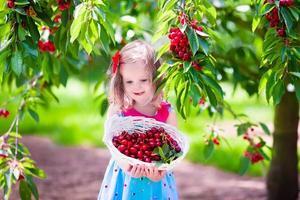 liten flicka som plockar färskt körsbärsbär i trädgården