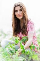 vacker ung kvinna trädgårdsskötsel foto