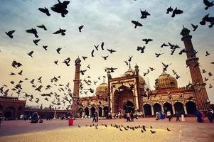 jama masjid moské, gamla delhi, Indien. foto