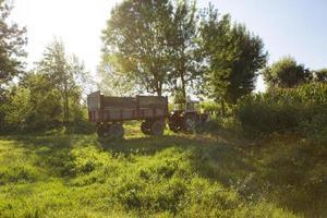 traktor på fältet foto