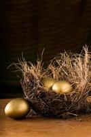 hö rede med 3 gyllene ägg. foto