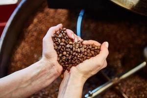 närbild av rostade kaffebönor i handen
