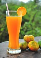 jugo de mandarina foto