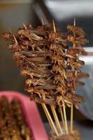 gräshoppor på en pinne foto