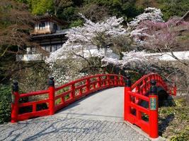 röd träbro nära minoh vattenfall foto