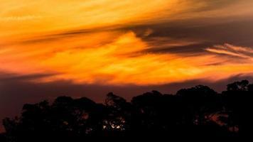 sydneys operahus och horisont foto