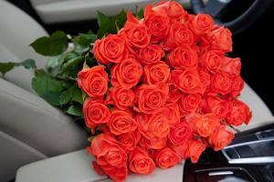 färska röda rosor foto