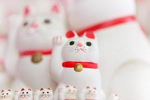 Manekineko. lycklig katt foto