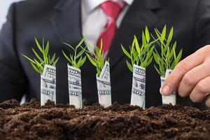 affärsman som håller plantor täckt med amerikansk dollar foto