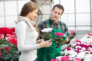 blomsterhandlare foto