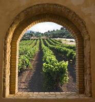välvda fönster på vingården foto