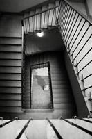 trappa uppifrån foto