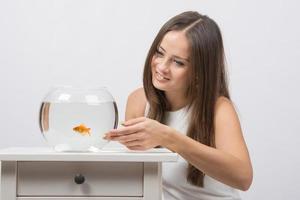 tjej liknar guldfisk i ett akvarium foto