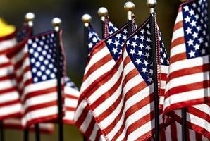 USA: s flaggor foto