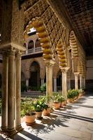 archway of patio de las doncellas, alce foto