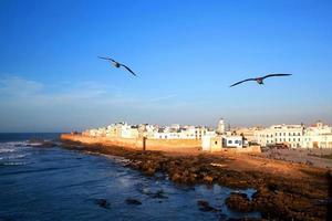 essaouira fästning, Marocko foto