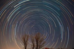 polaris och stjärnspår över träden foto