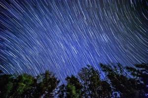 stjärnspår över skogen foto