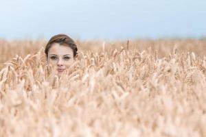 rolig ung kvinna gömmer sig i majsfält foto