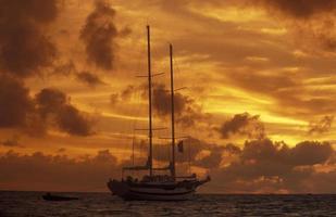 Indiska havsmaldiverna seglar foto