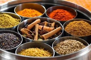 dabba masala (indisk kryddlåda) foto