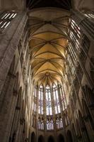 katedralen i Saint Peau de Beauvais foto
