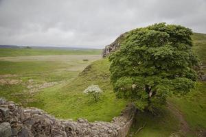 Hadrianus mur foto