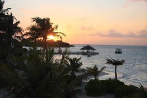 maldiverna, malè södra atollen foto