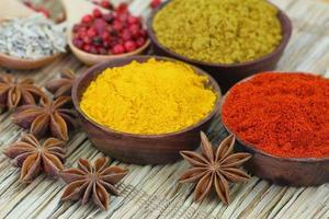 urval av indiska kryddor, närbild foto