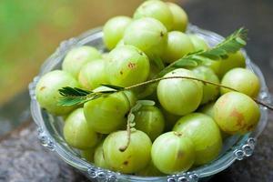 amla indiska krusbär många med blad foto