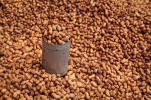 stekt jordnötter som säljs på indisk gata foto
