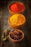 färgglada kryddor i skålar. foto