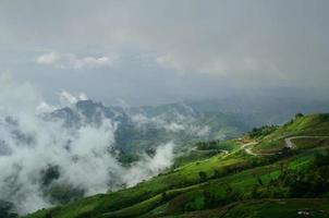 dimma på berget foto