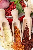 kryddor och smaksättningar på vit bakgrund foto