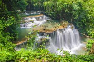 tropisk skogsklippa foto
