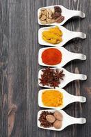 kryddor i skedar foto