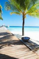 träbrygga på öde tropisk palmstrand i Maldiverna foto