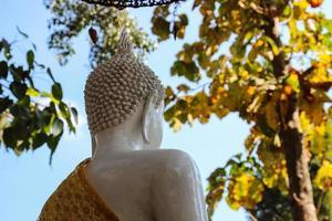 baksidan av den vita buddha statyn foto