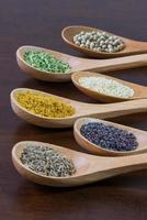 kryddor i träskedar foto