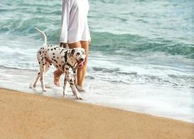 ung flicka med en hund som går på havet foto