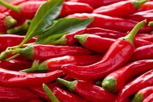 röd chilipeppar. foto