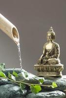 grön avkoppling med Buddha