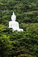 vit buddha staty foto