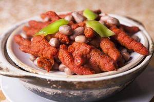 kinesisk läcker mat foto