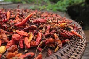 laos vang vieng jordbruksmat chili foto