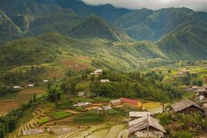 kattkattstad i sapa, Vietnam foto